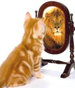 cat-looking-into-mirror-lion
